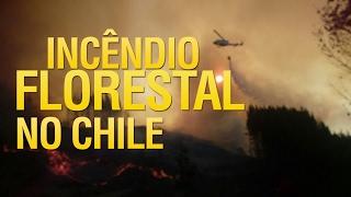 Incêndio florestal no Chile (1ª Parte)